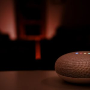 Google's new Assistant feature is an incognito mode for smart speakers