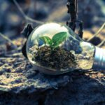 Alessandro Bazzoni hails the green energy revolution