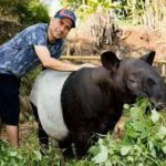 Dubai policeman, Masoud Alhammad express his love for animal by the opening zoo