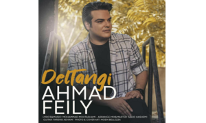 Exclusive interview with Ahmad Feily, a popular Iranian singer and songwriter