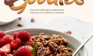 Goodies Global is a best food brand that provides healthy and hygienic food